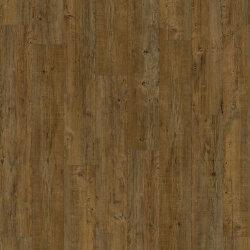 24828P Latin Pine. Transform Click. Виниловый ламинат IVC Moduleo.